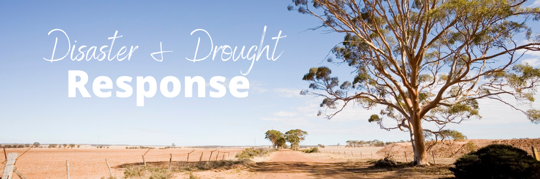 disaster drought & response
